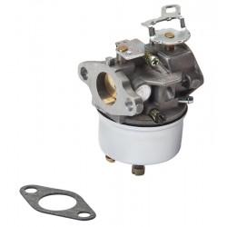 Kompletní karburátor TECUMSEH - (50-662)