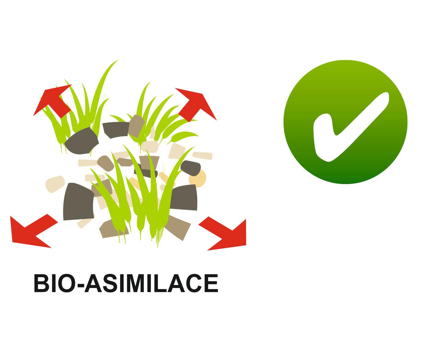 Bio-asimilace