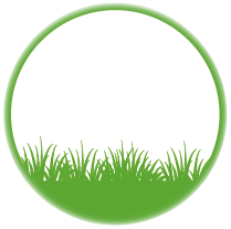 Nízká tráva