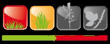 Vysoká tráva plevele