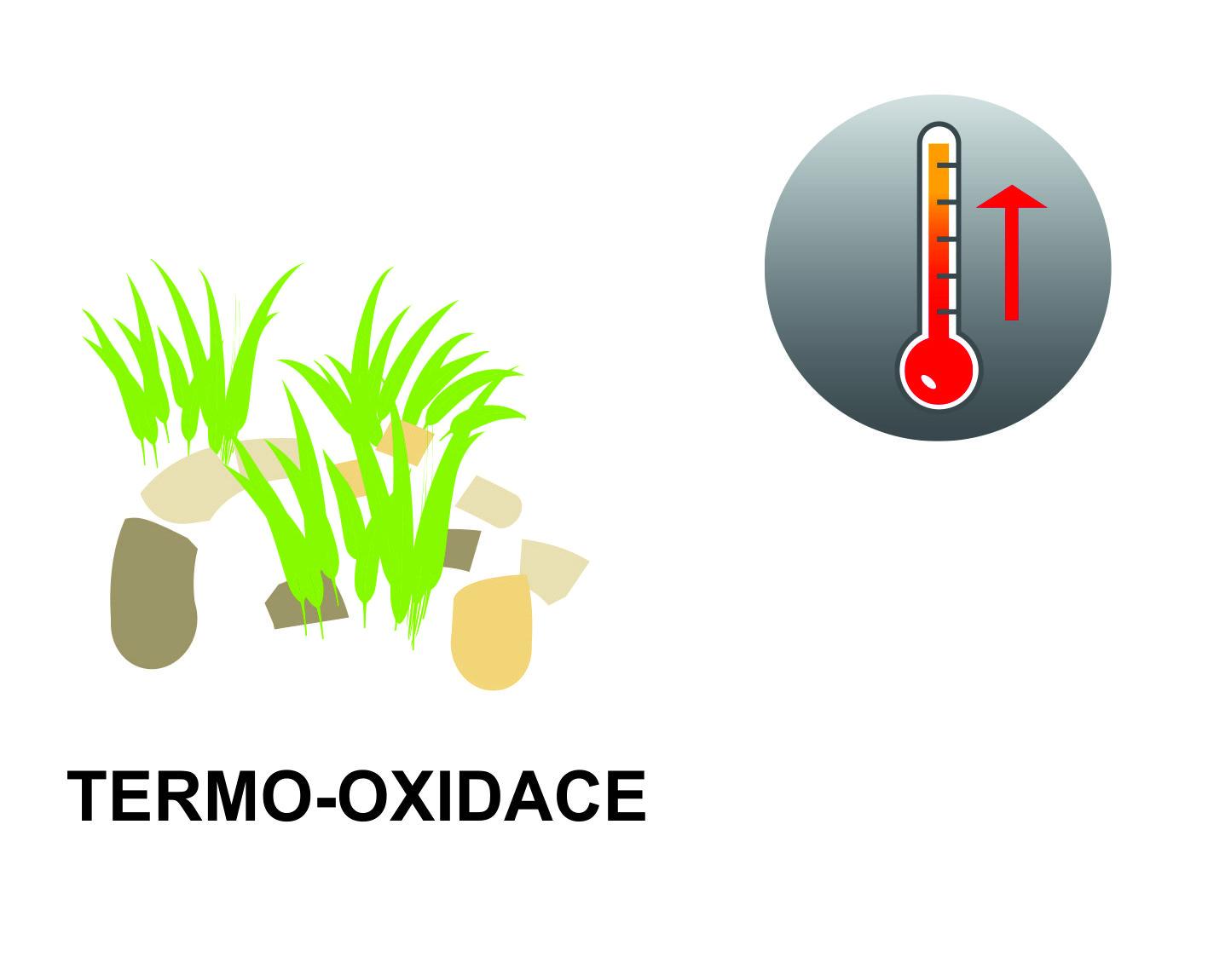 Termo-oxidace